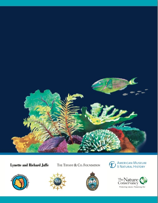 Marine Protected Areas Bahamas 9