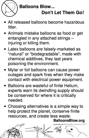 Balloons Blow fact sheet
