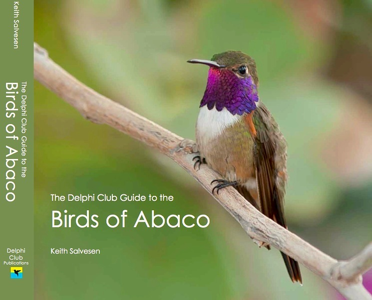 Delphi Club Guide to the Birds of Abaco (Jacket)