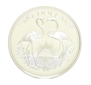 Flamingos silver coin JPG