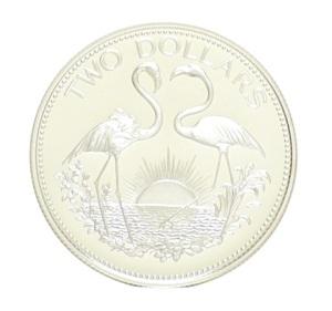 Flamingos silver coin JPG