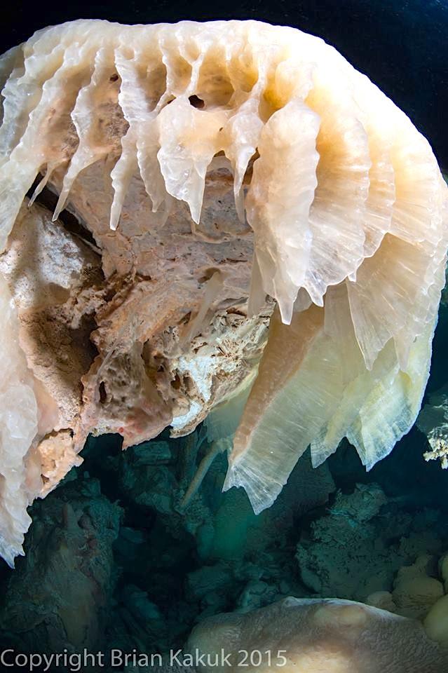 Ralph's Cave, Abaco Blue Hole 4.16 (Brian Kakuk) 1