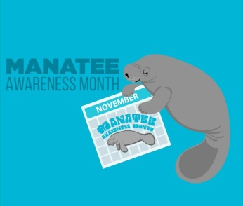 Manatee Awareness Graphic (Peppermint Narwhal)