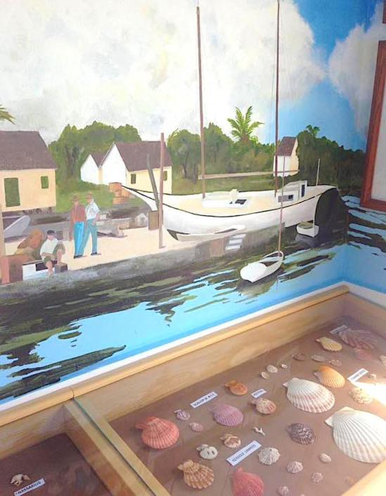 Cherokee Shell Museum, Abaco Bahamas / Gifts from the Sea / Cinder Pinder