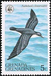 Audubon's Shearwater Stamp) OS