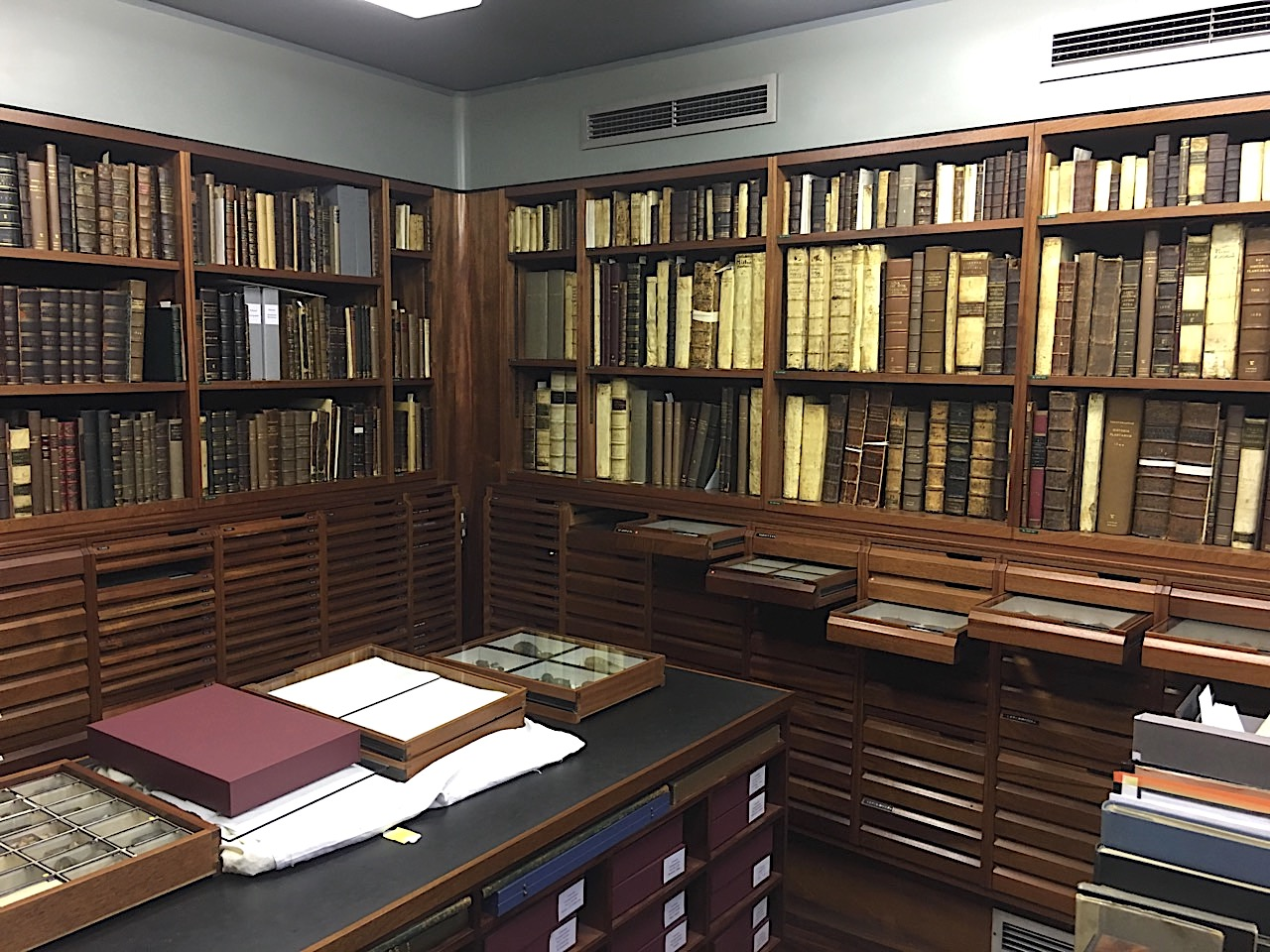 Linnaeus Collection, Linnean Society (© KS / Rolling Harbour)