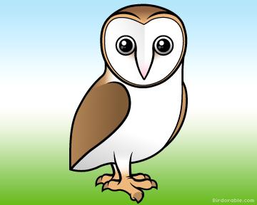 Barn Owl (Birdorable)