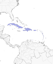 Image Result For Caribbean Islands Map Close Up