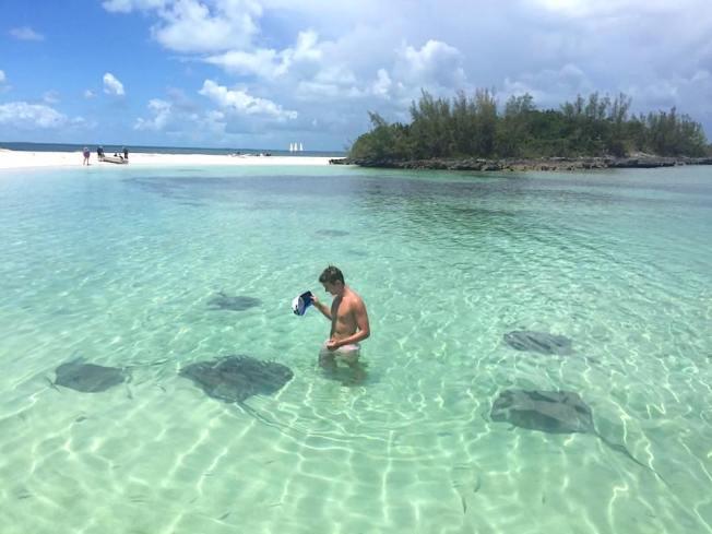 Southern Stingrays, Manjack Cay, Bahamas (Samantha Regan)