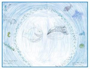 BMMRO children's poster competition winners