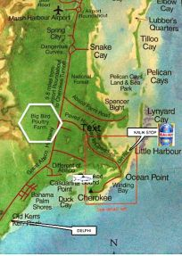 Abaco Map - Little Harbour / Marsh Harbour / Bird Site (KS)