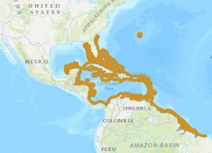 TOBACCO BASSLET RANGE MAP