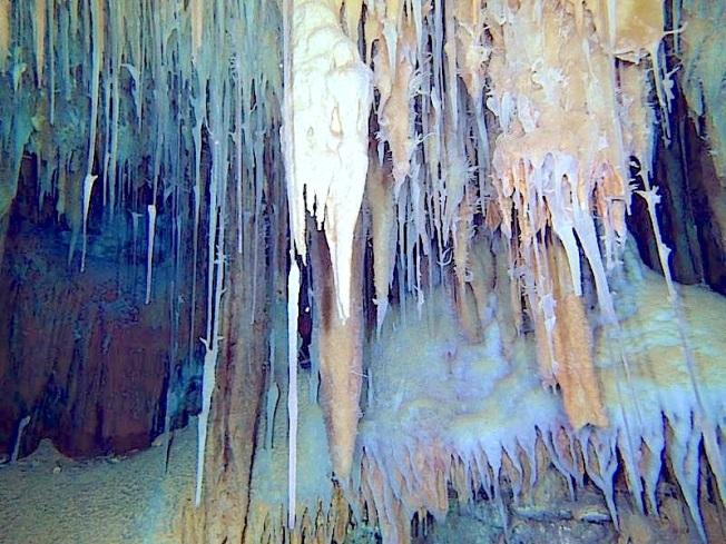 The underground Cave Systems of Abaco Bahamas (Brian Kakuk, Hitoshi Miho)
