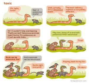 Toxic: poison v venom cartoon (Rosemary Mosco)