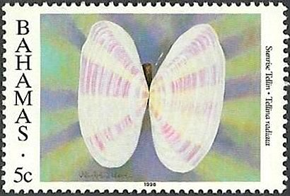 Sunrise Tellin Shell 5c Stamp Bahamas (BPB)