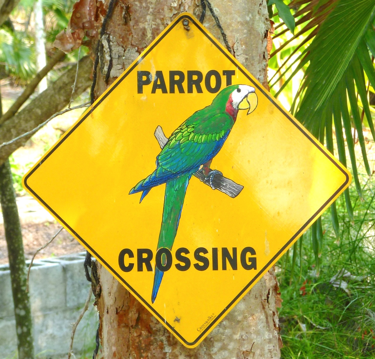 Parrot Crossing sign Abaco Bahamas (Keith Salvesen)