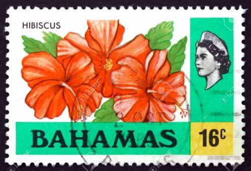 Bahamas Stamp Hibiscus 123RF stock