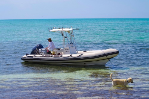 BMMRO research boat, Sandy Point Abaco Bahamas (Keith Salvesen / Rolling Harbour))